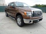 2012 Golden Bronze Metallic Ford F150 XLT SuperCrew 4x4 #64510894