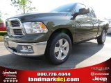 2012 Sagebrush Pearl Dodge Ram 1500 Big Horn Quad Cab #64510804