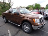 2012 Golden Bronze Metallic Ford F150 XLT SuperCab 4x4 #64611669