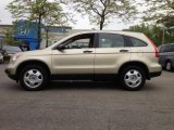 2008 Borrego Beige Metallic Honda CR-V LX 4WD #64664946