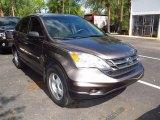 2010 Urban Titanium Metallic Honda CR-V LX #64663142