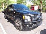 2010 Tuxedo Black Ford F150 Harley-Davidson SuperCrew 4x4 #64663141