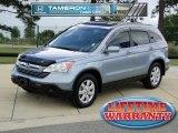 2009 Glacier Blue Metallic Honda CR-V EX-L #64664513