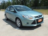 2012 Frosted Glass Metallic Ford Focus SE 5-Door #64821951