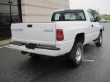 1999 Dodge Ram 1500 Sport Regular Cab 4x4 Exterior