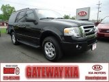2010 Tuxedo Black Ford Expedition XLT 4x4 #64870558
