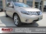 2009 Saharan Stone Metallic Nissan Murano LE AWD #64870289