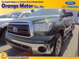2010 Spruce Green Mica Toyota Tundra Double Cab 4x4 #64870015