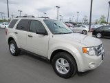 2009 White Suede Ford Escape XLT V6 #64870187