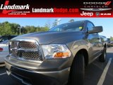 2010 Mineral Gray Metallic Dodge Ram 1500 ST Regular Cab #64975416