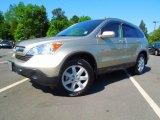 2008 Borrego Beige Metallic Honda CR-V EX-L #65041882