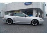 2001 Silver Metallic Ford Mustang Cobra Convertible #65116637
