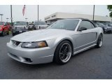 2001 Ford Mustang Cobra Convertible Data, Info and Specs