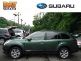 2012 Cypress Green Pearl Subaru Outback 2.5i Premium #65138016