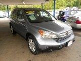 2009 Glacier Blue Metallic Honda CR-V EX-L 4WD #65138260