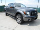 2011 Sterling Grey Metallic Ford F150 FX4 SuperCrew 4x4 #65228876