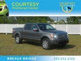 2010 Sterling Grey Metallic Ford F150 Platinum SuperCrew 4x4 #65229276