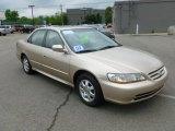 2002 Naples Gold Metallic Honda Accord EX Sedan #65229510