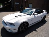 2013 Ford Mustang GT/CS California Special Convertible Data, Info and Specs