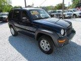 2002 Patriot Blue Pearlcoat Jeep Liberty Sport 4x4 #65307427