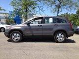 2009 Borrego Beige Metallic Honda CR-V LX 4WD #65307325