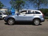 2009 Glacier Blue Metallic Honda CR-V EX-L 4WD #65307307