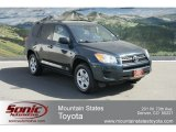 2010 Black Forest Pearl Toyota RAV4 I4 4WD #65306608