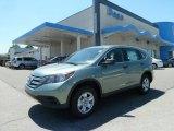 2012 Opal Sage Metallic Honda CR-V LX 4WD #65361945