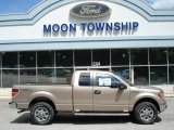 2012 Pale Adobe Metallic Ford F150 XLT SuperCab 4x4 #65448585