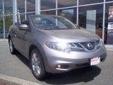 2011 Platinum Graphite Nissan Murano CrossCabriolet AWD #65481851