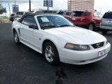 2004 Ford Mustang Convertible Data, Info and Specs