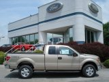 2012 Pale Adobe Metallic Ford F150 XLT SuperCab 4x4 #65480811