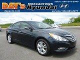 2013 Pacific Blue Pearl Hyundai Sonata Limited #65481624