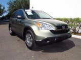 2009 Green Tea Metallic Honda CR-V LX #65480757