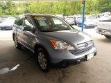 2009 Glacier Blue Metallic Honda CR-V EX-L 4WD #65553777