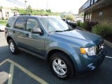 2010 Steel Blue Metallic Ford Escape XLT V6 4WD #65553534