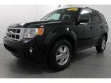 2009 Black Ford Escape XLT V6 4WD #65611686