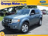 2010 Steel Blue Metallic Ford Escape XLT V6 4WD #65612049