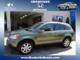 2009 Green Tea Metallic Honda CR-V EX-L 4WD #65680833