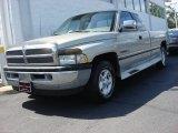 1996 Dodge Ram 1500 Driftwood Pearl