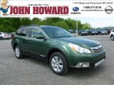 2012 Cypress Green Pearl Subaru Outback 2.5i Limited #65681244