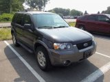 2006 Black Ford Escape XLT V6 4WD #65753293