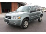 2006 Titanium Green Metallic Ford Escape Limited 4WD #65753142