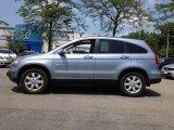 2009 Glacier Blue Metallic Honda CR-V EX-L 4WD #65780673