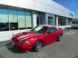 2001 Laser Red Metallic Ford Mustang GT Convertible #65970607