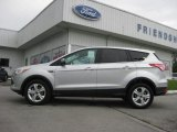 2013 Ingot Silver Metallic Ford Escape SE 1.6L EcoBoost #66079967