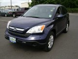 2009 Royal Blue Pearl Honda CR-V EX-L 4WD #66079852