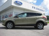 2013 Ginger Ale Metallic Ford Escape SEL 1.6L EcoBoost 4WD #66121863