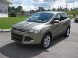 2013 Ford Escape Ginger Ale Metallic