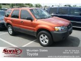 2006 Blazing Copper Metallic Ford Escape XLT V6 4WD #66121662
